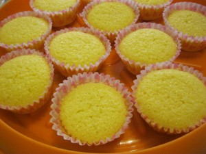muffinslimone 011